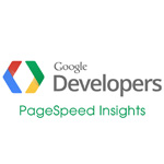 google-page-insight-wordpress-100